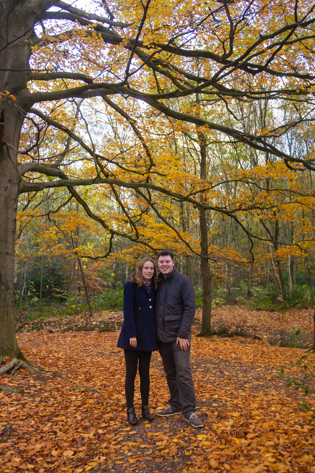 Young couple under autumnal branches in a wood clearing
