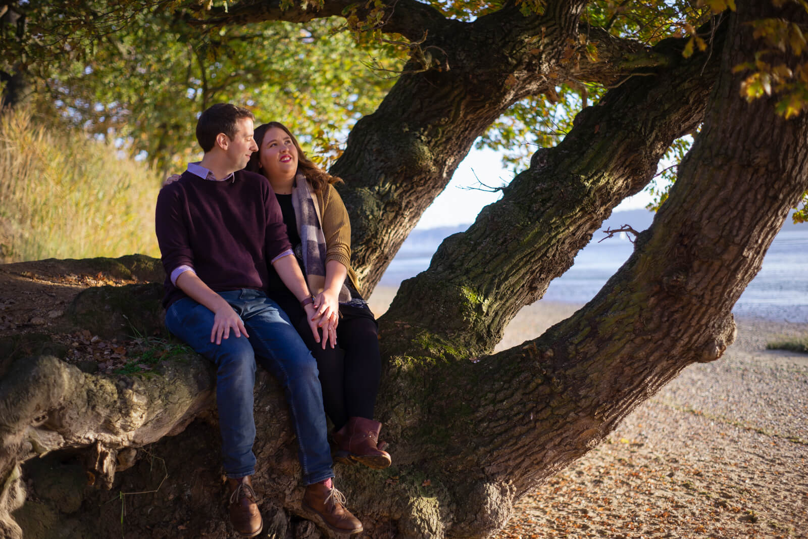Young engaged couple sitting in a tree on a beach by the water
