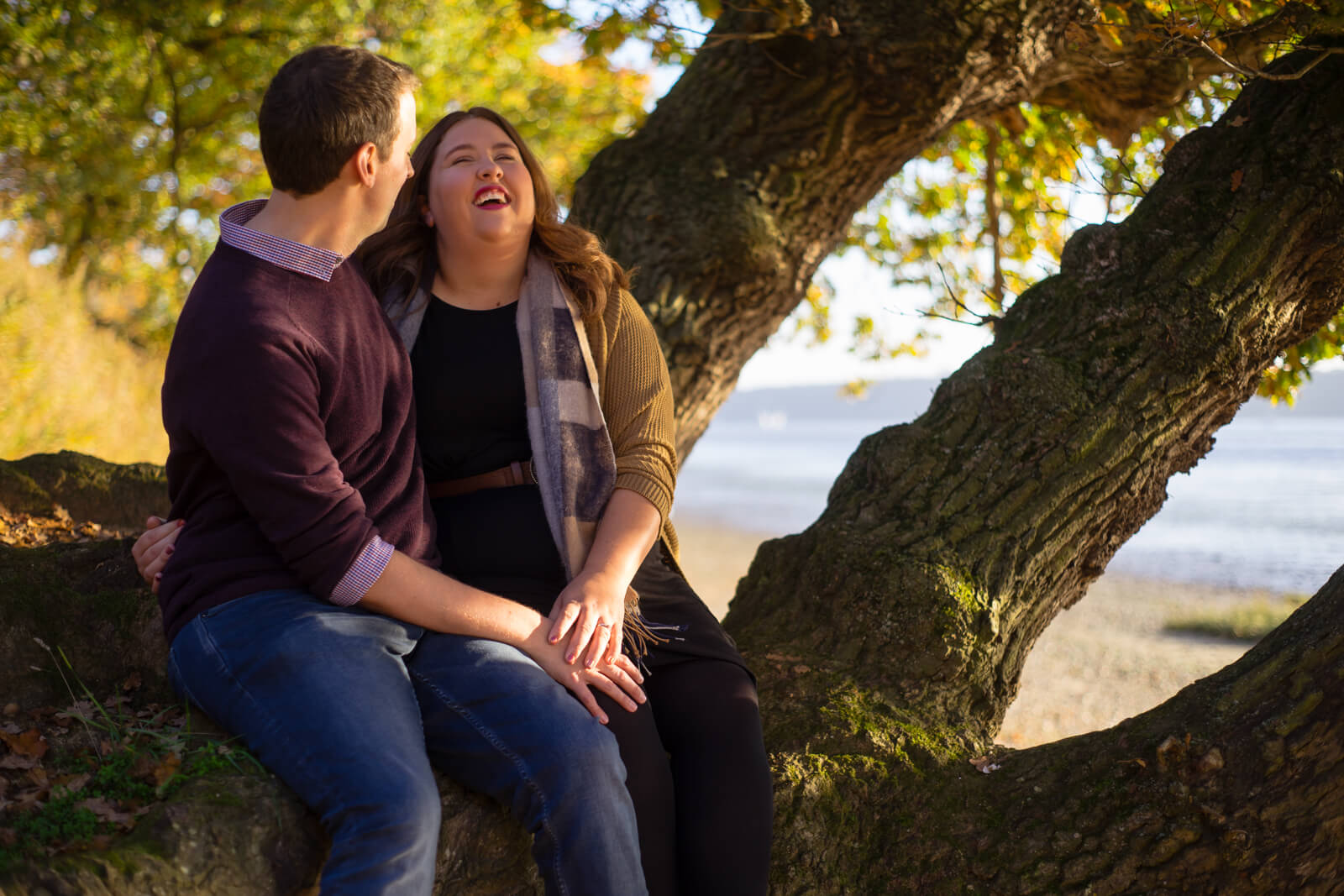 Engaged couple sitting in a low tree lauging by a beach